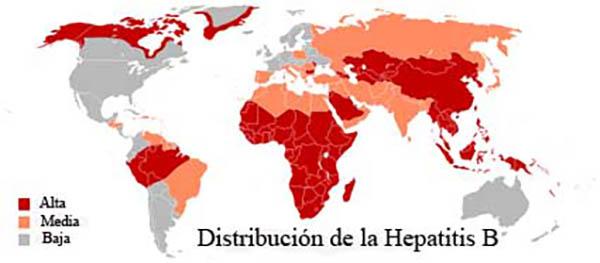 Hepatitis B : Vacunas y prevención en Viaje por India