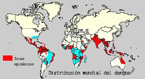 Dengue: Vacunas y prevención en Viaje por India
