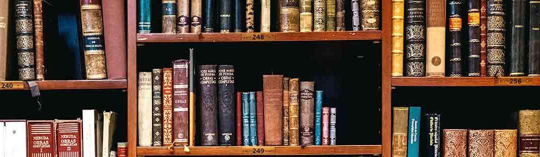 Literatura en la cultura India : Viaje por India
