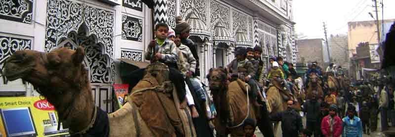 Muharran : Celebraciones y festividades en India