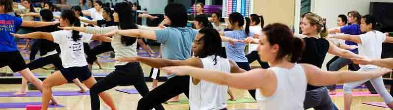 Hatha Yoga con Viaje por India