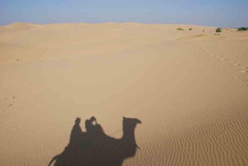 Sombra de camello