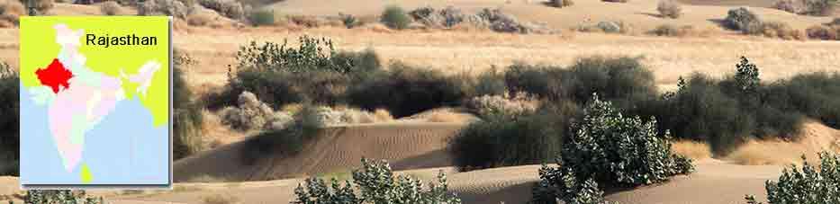 Parque Nacional del Desierto cerca de Jaisalmer