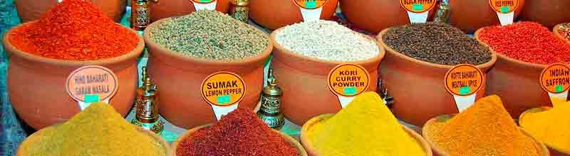 Teoría de los seis sabores – Viaje por India